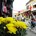 Travel tips for enjoying Tet Holiday in Hoi An