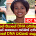 Seya's father allows to do a DNA test