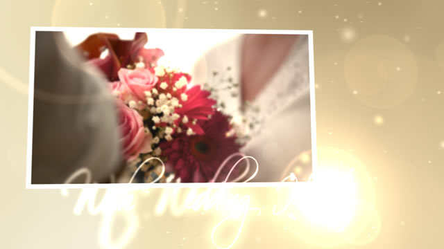 Free download after effects projects wedding hearts cs4 for Aep templates free download