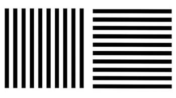 Estudio de Helmholtz: dos series de líneas paralelas que encajan en el mismo cuadrado.
