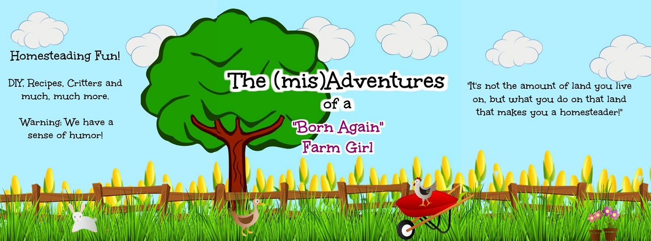 "The (mis)Adventures of a ""Born Again"" Farm Girl"