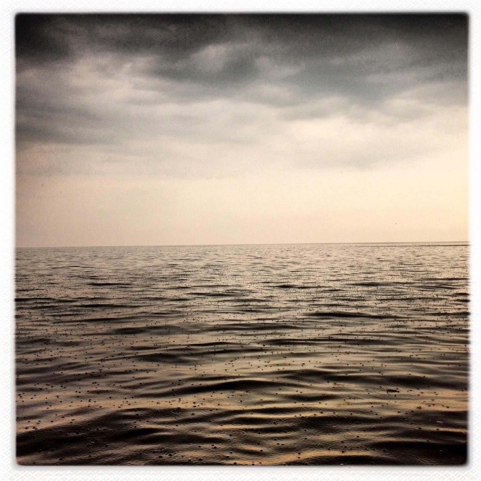 Photograph, Michael Christopher Brown: Rain.