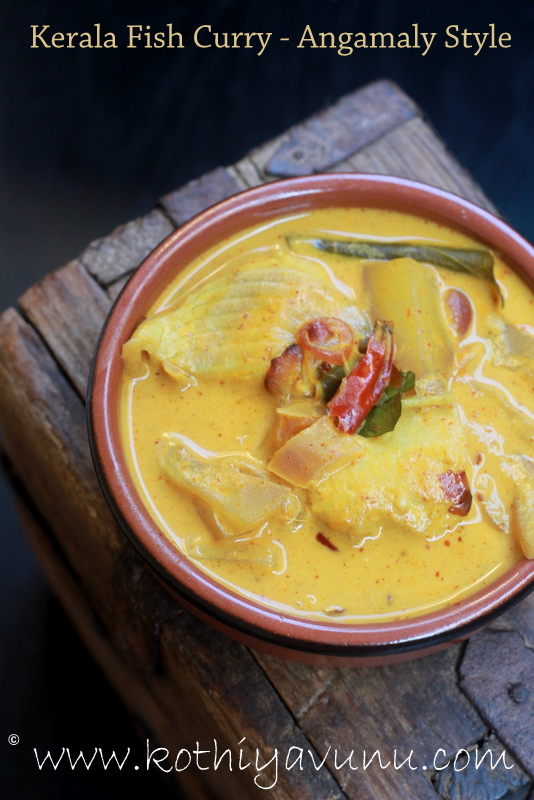 Indian Fish Coconut Curry Recipes — Dishmaps
