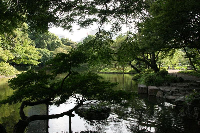 Letras de viajes jap n tokio jard n koishikawa korakuen for Jardin koishikawa korakuen