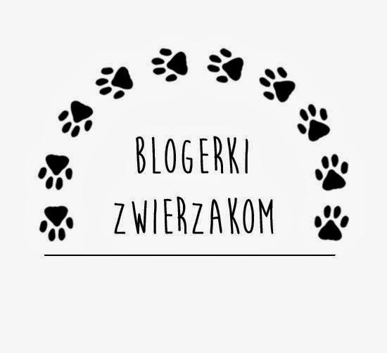 http://blogerkizwierzakom.blogspot.com