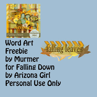 Falling Down by Arizona Girl