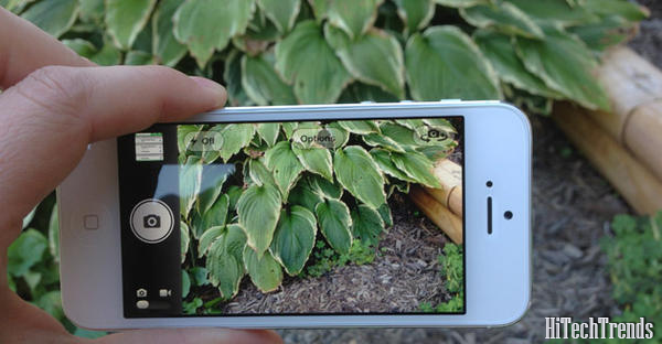 iPhone 5 : Low Light Magic