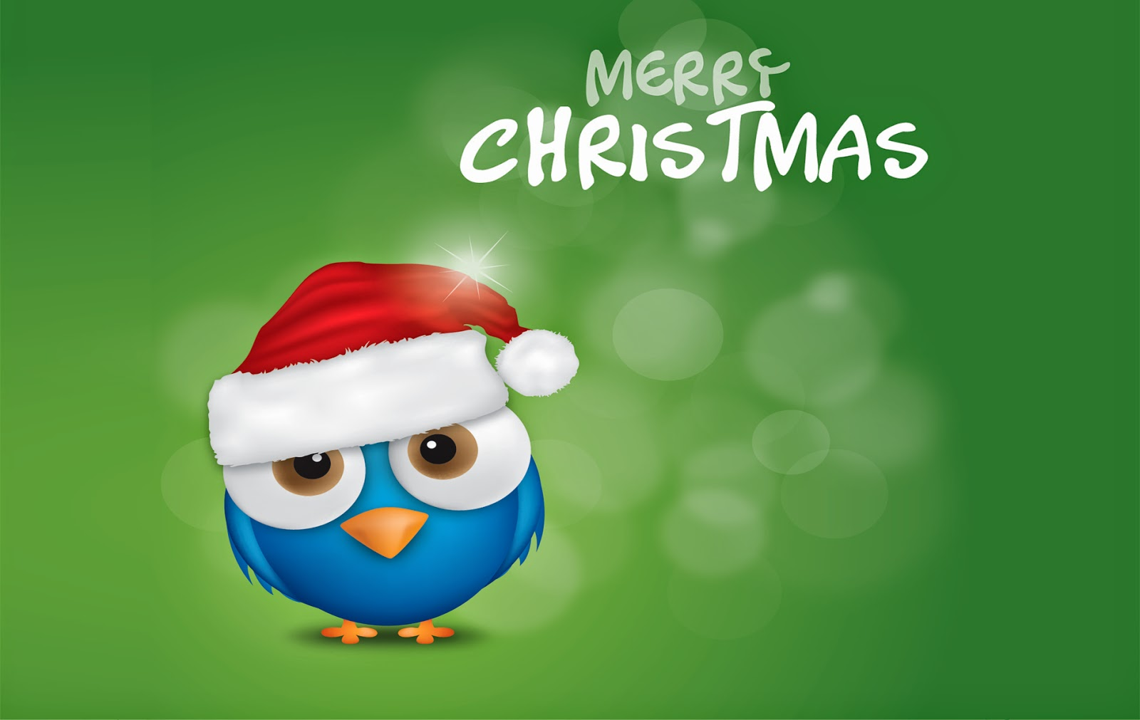 Christmas-twitter-bird-image-with-merry-christmas-text-picture.jpg