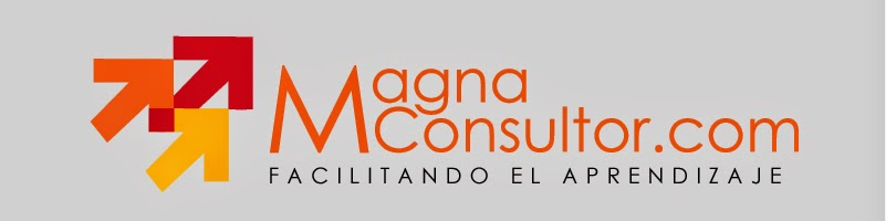 Magnaconsultor.com