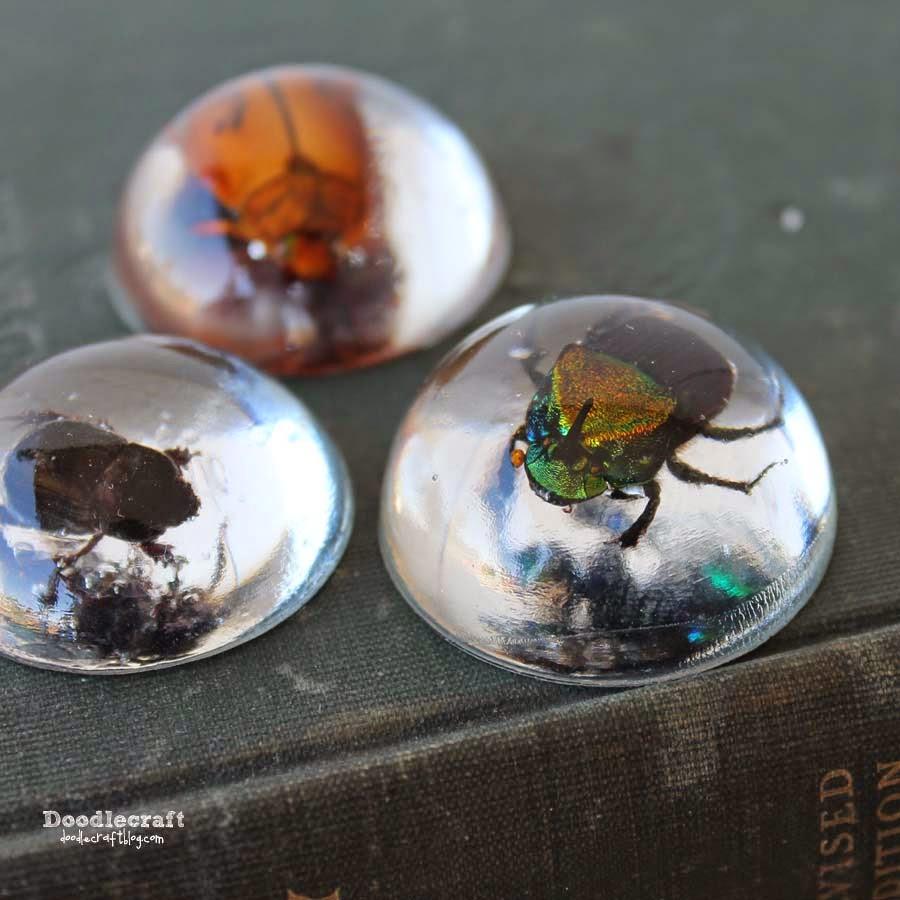 http://www.doodlecraftblog.com/2014/10/beetles-in-resin-jewelry.html