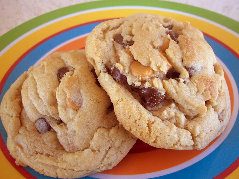 ... perfect addition to a chocolate chip cookie this cookie gets a double