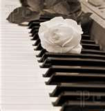 Love Piano much..