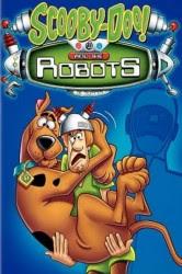 Scooby Doo y los Robots (Scooby-Doo! and the Robots) (2011) Español Latino