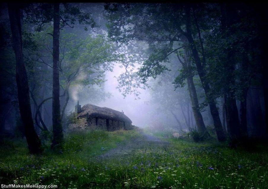 Unusual Dream Hermit House