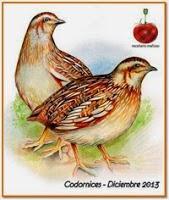 http://recetarioaragones.blogspot.com.es/2013/11/diciembre-picarona-codorniz.html