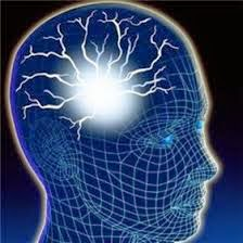 Career Brain Booster
