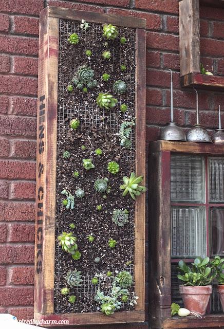 Adoro artesanato jardim vertical de suculentas - Jardiniere verticale ...