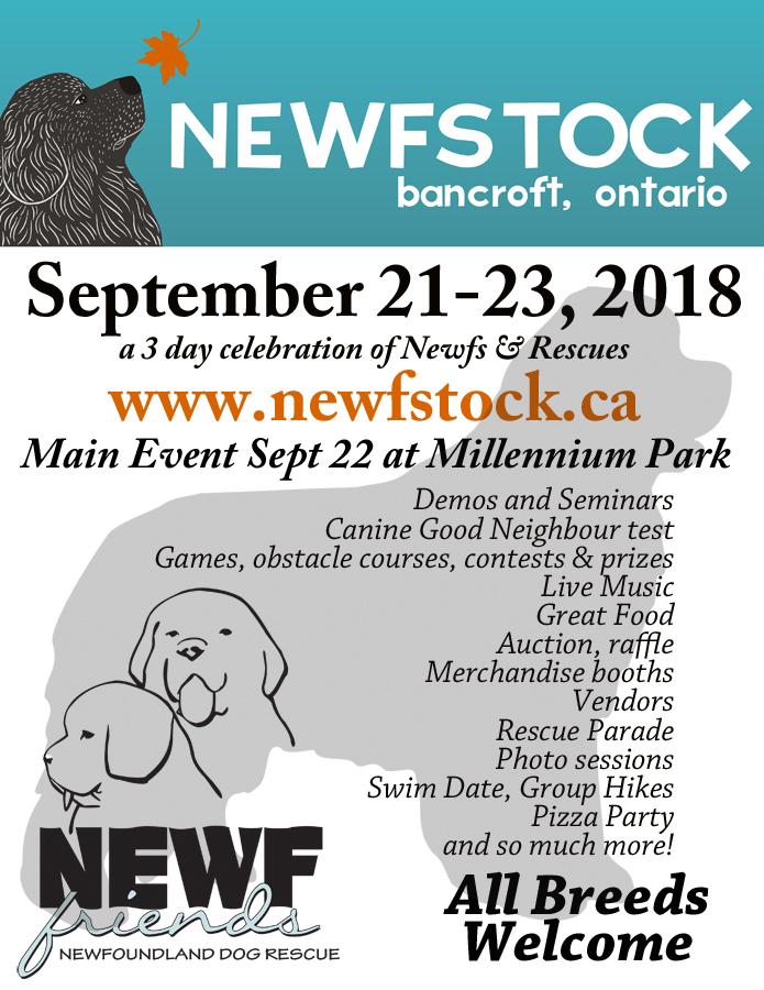 NewfStock 2018