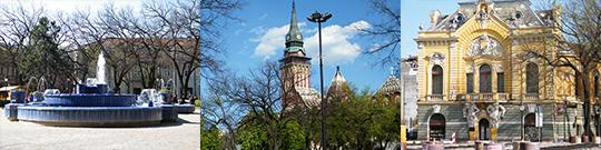 Subotica centar, Gradska kuća, Plava fontana