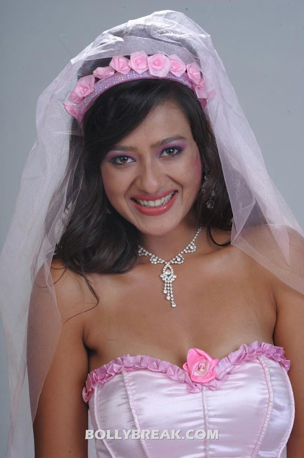 Madalasa Sharma Pink Wedding Gown Dress Photoshoot Pics