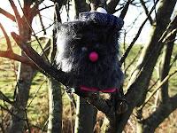 Beag Mcgonk up the tree