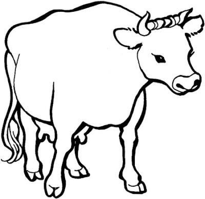 La Chachipedia: Vacas, toros y bueyes para colorear