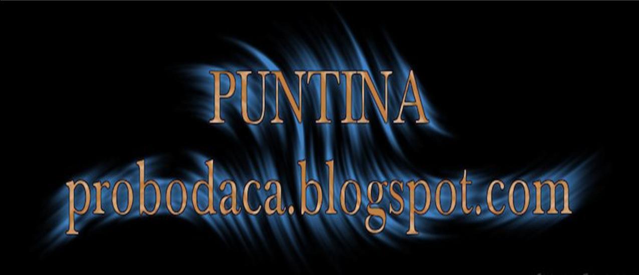 PUNTINA
