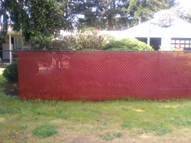 graffiti on privacy slats in a chain link fence. Black Bedroom Furniture Sets. Home Design Ideas