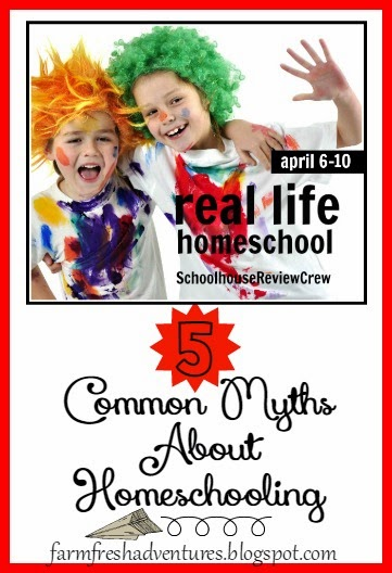 5 Common Myths About Homeschooling