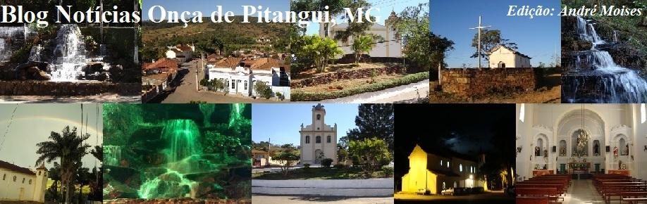 Notícias Onça de Pitangui