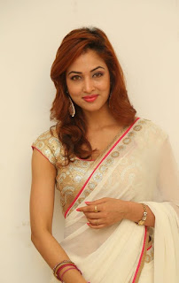 Actress Vidisha Srivastava Latest Pictures in Saree at Harinath Wedding Reception  15