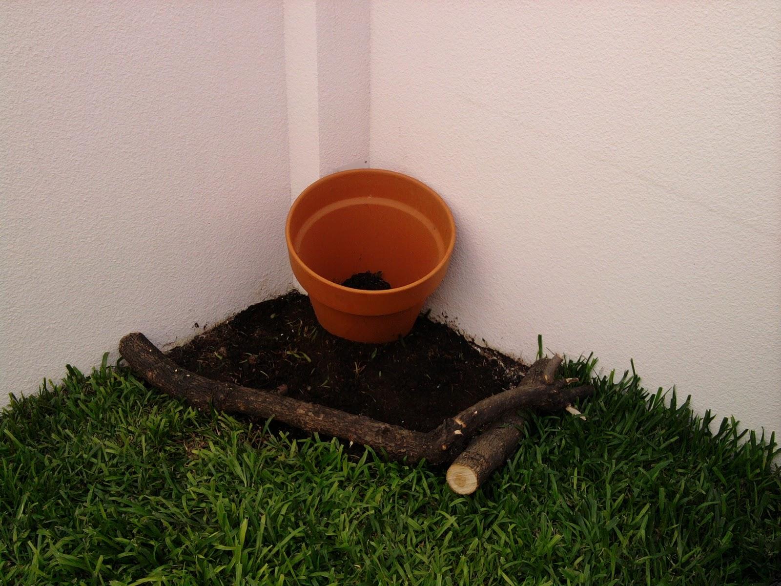 T cnico en jardiner a dise o en jard n for Tecnico en jardineria