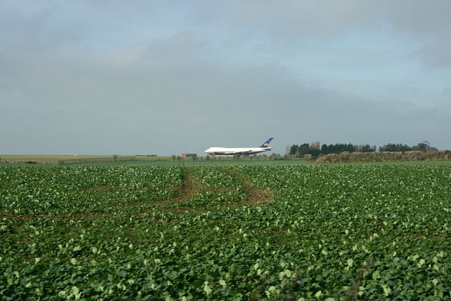 aeroplane in a field