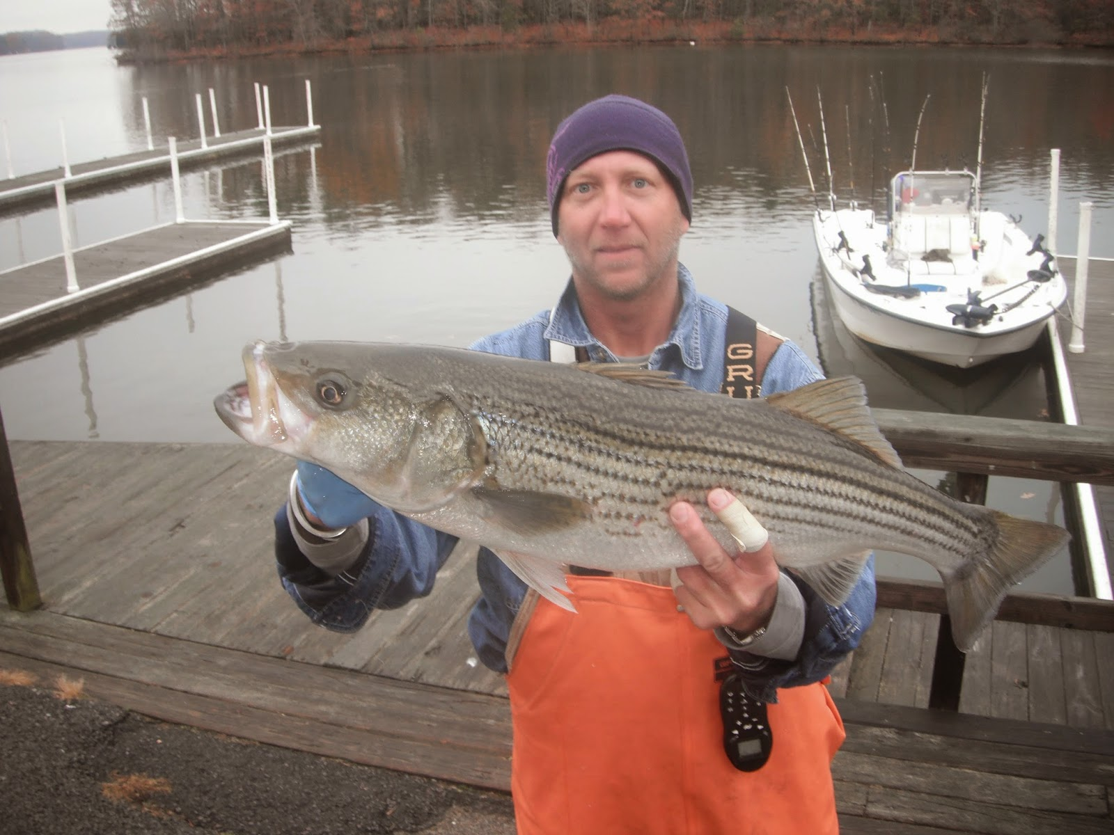 Lake anna lake report by chris craft decemeber 2014 the for Lake anna fishing