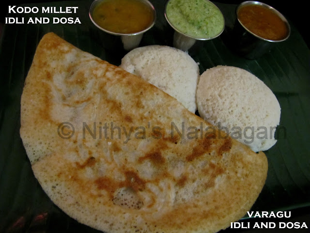 Varagu Idli and Dosa