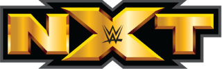 Poster Of WWE NXT 13th January 2016 WebDL 480P 200MB
