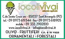IOCOLI VIVAI