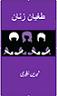 طغیان زنان،اثرشیرین نظیری اثرشیرین نظیری(در۲۷۰) صفحه