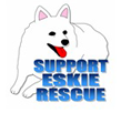 American Eskimo Dog Rescue