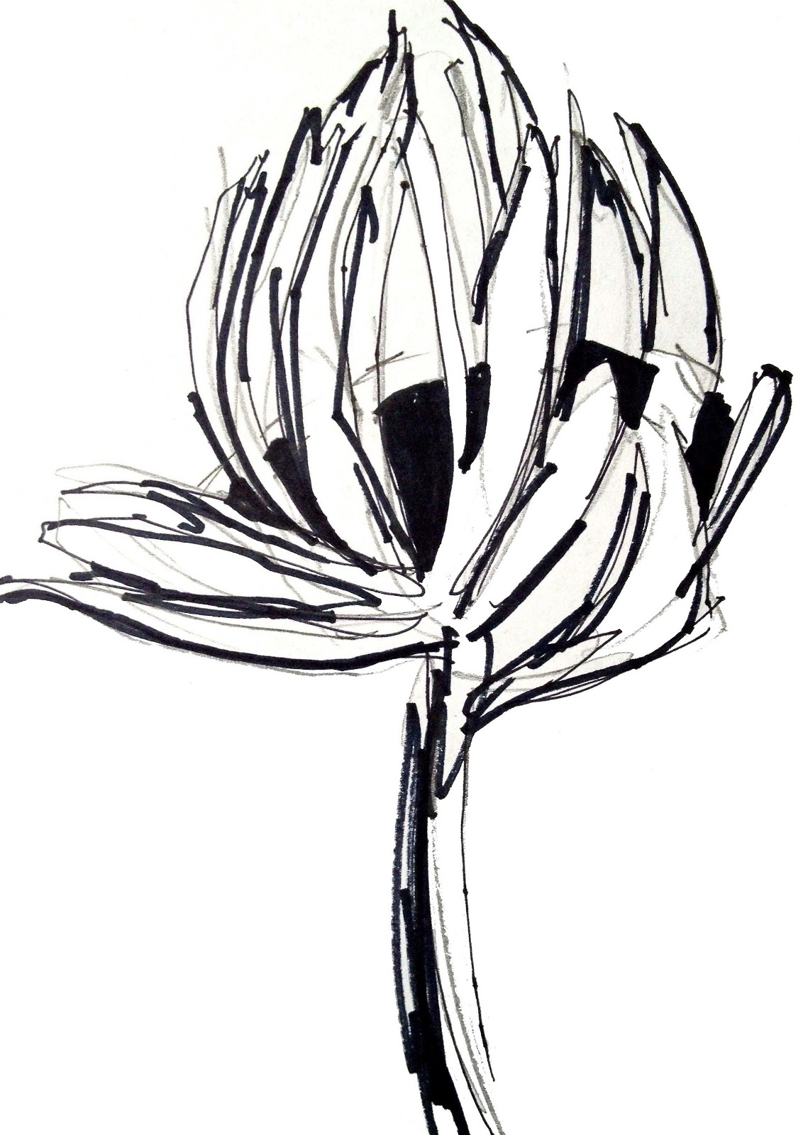 Deborah Velásquez May Flower Challenge Day Eight • Sketches to Regroup and R