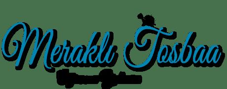 Meraklı Tosbaa - Öğrenme Yolcusu