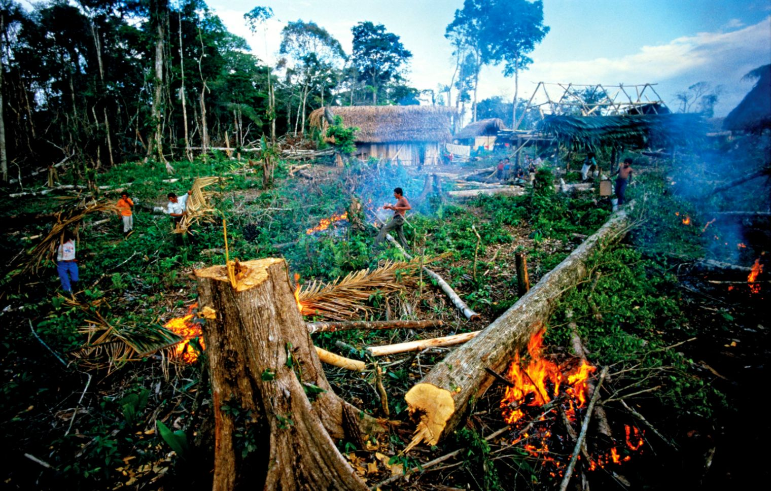Guatemala rainforest destruction    Kids Encyclopedia