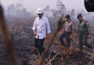 Jokowi tinjau lokasi kebakaran hutan