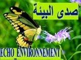 صدى البيئة