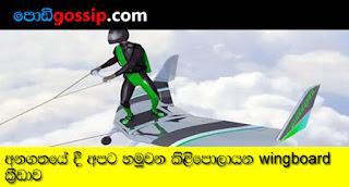 wingbord sport