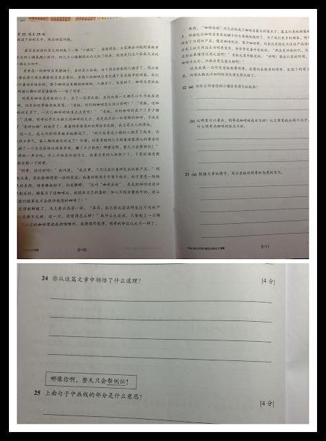 Write my best english essay upsr
