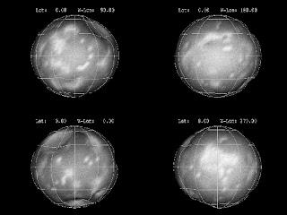 phoebe moon