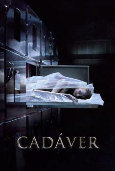 Cadáver Torrent - BluRay 720p/1080p Dual Áudio