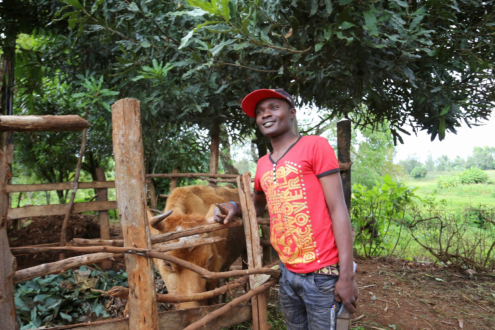 Meet Denis Kinyua, a 24 year old local champion from Cohort 4 of the STRYDE Technoserve host case study that has successfully used his investments in Agriculture to further his education and feed his family.
