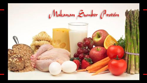 Sumber Protein Tinggi Pada Makanan | Satria Desian | Kolom ...